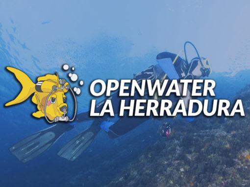 Openwater La Herradura